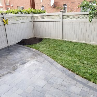 backyard without tree